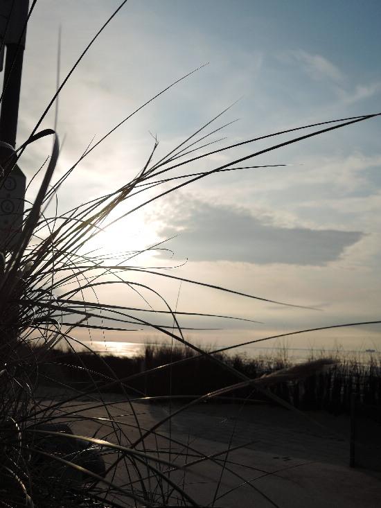 http://www.maier-lyrik.de/Cuxhaven-Duene2.JPG